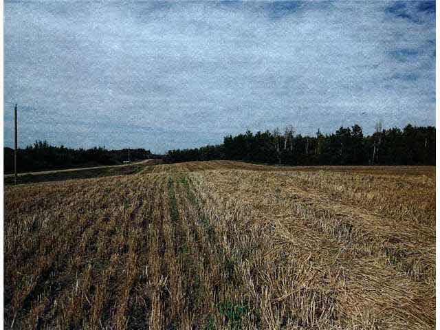Main Photo: RR202 Twp502: Rural Beaver County Rural Land/Vacant Lot for sale : MLS® # E4064195