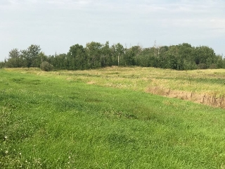 Main Photo: Township Road 505 Range Road 235: Rural Leduc County Rural Land/Vacant Lot for sale : MLS® # E4078207