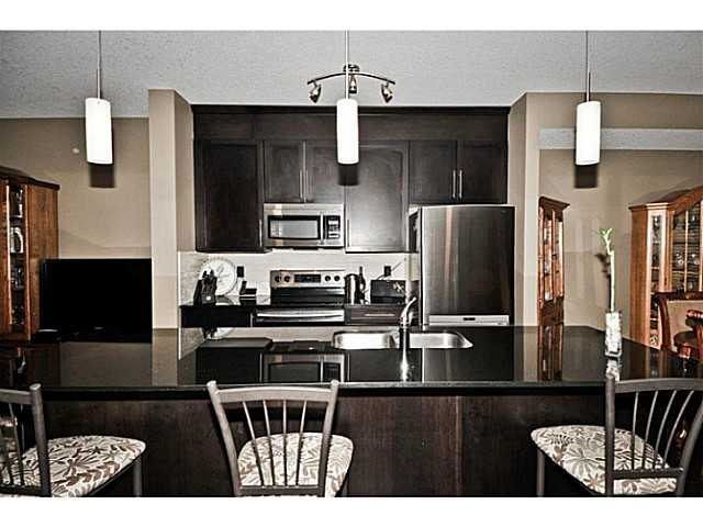 Photo 13: 412 SKYVIEW POINT Place NE in Calgary: Skyview Ranch House for sale : MLS® # C3651642