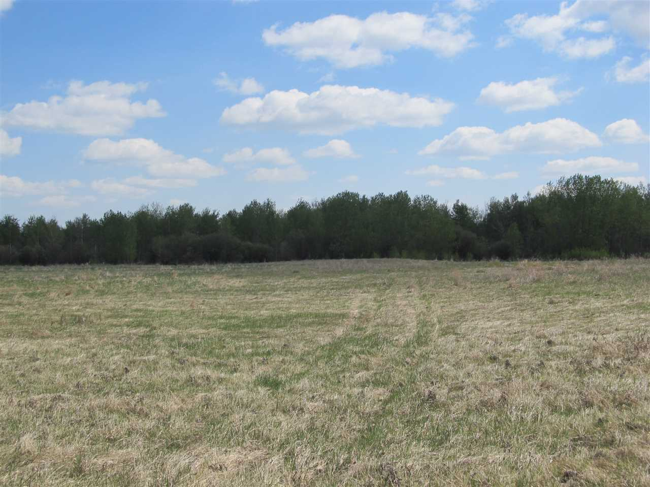 Photo 4: RR 204 HWY 661: Rural Thorhild County Rural Land/Vacant Lot for sale : MLS(r) # E4065910