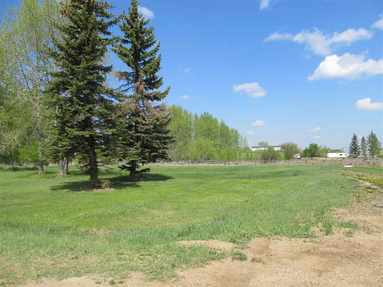 Photo 10: RR 204 HWY 661: Rural Thorhild County Rural Land/Vacant Lot for sale : MLS(r) # E4065910