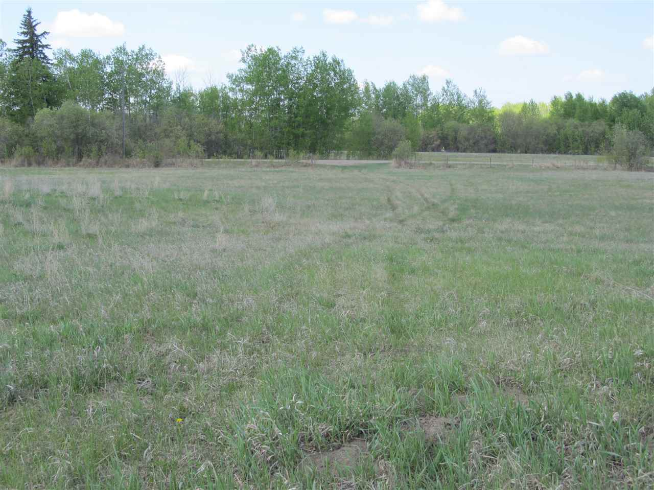 Photo 6: RR 204 HWY 661: Rural Thorhild County Rural Land/Vacant Lot for sale : MLS(r) # E4065910