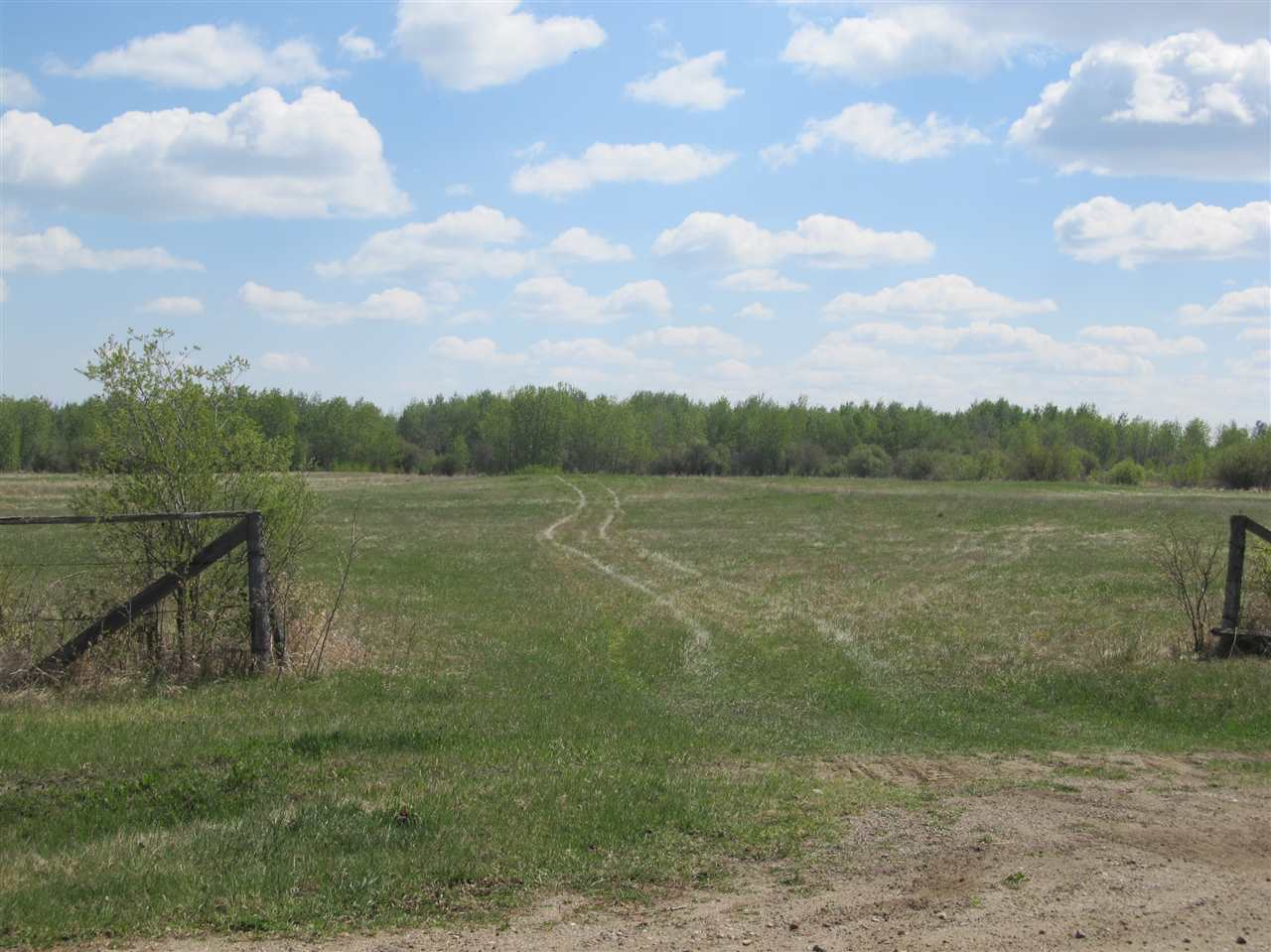 Photo 9: RR 204 HWY 661: Rural Thorhild County Rural Land/Vacant Lot for sale : MLS(r) # E4065910