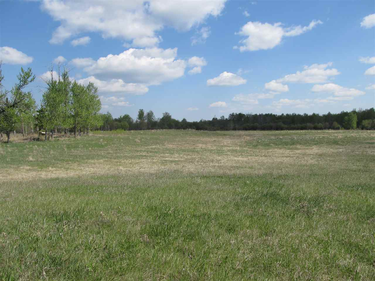 Photo 3: RR 204 HWY 661: Rural Thorhild County Rural Land/Vacant Lot for sale : MLS(r) # E4065910
