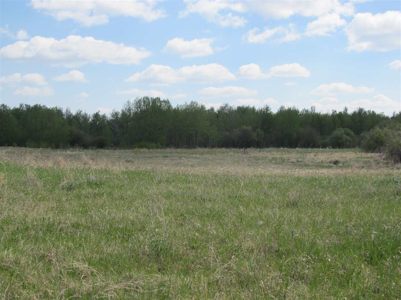 Photo 5: RR 204 HWY 661: Rural Thorhild County Rural Land/Vacant Lot for sale : MLS(r) # E4065910