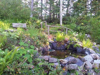 Enjoy the pond and walks through the various levels of garden.