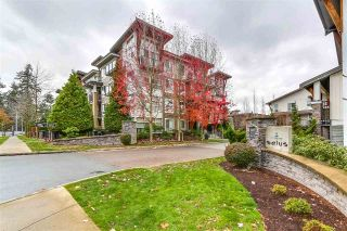 "Main Photo: 65 6671 121 Street in Surrey: West Newton Townhouse for sale in ""Salus"" : MLS® # R2220805"