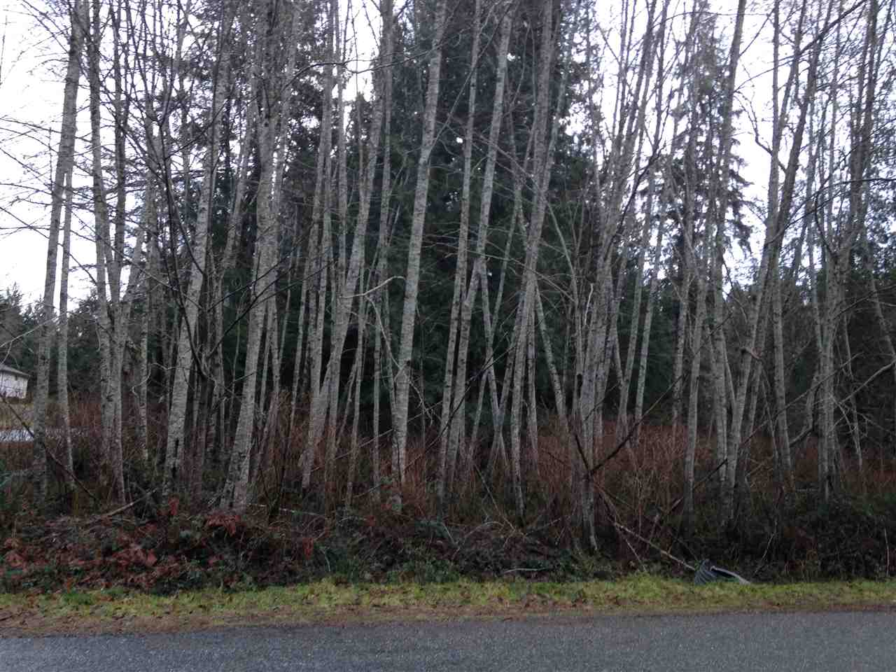 Photo 5: Photos: LOT 72 GREENTREE ROAD in Egmont: Pender Harbour Egmont Home for sale (Sunshine Coast)  : MLS® # R2027668
