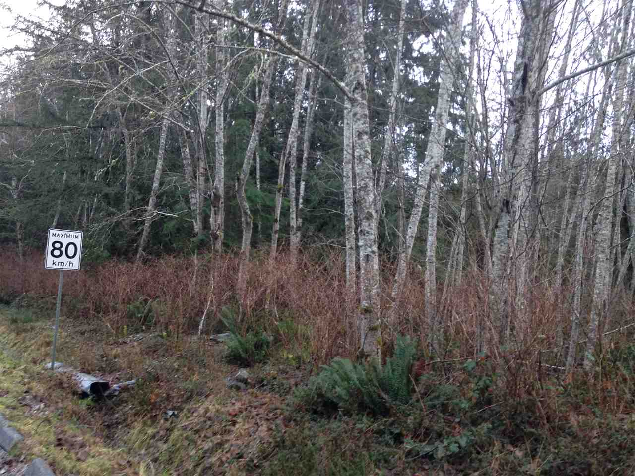 Photo 6: Photos: LOT 72 GREENTREE ROAD in Egmont: Pender Harbour Egmont Home for sale (Sunshine Coast)  : MLS® # R2027668