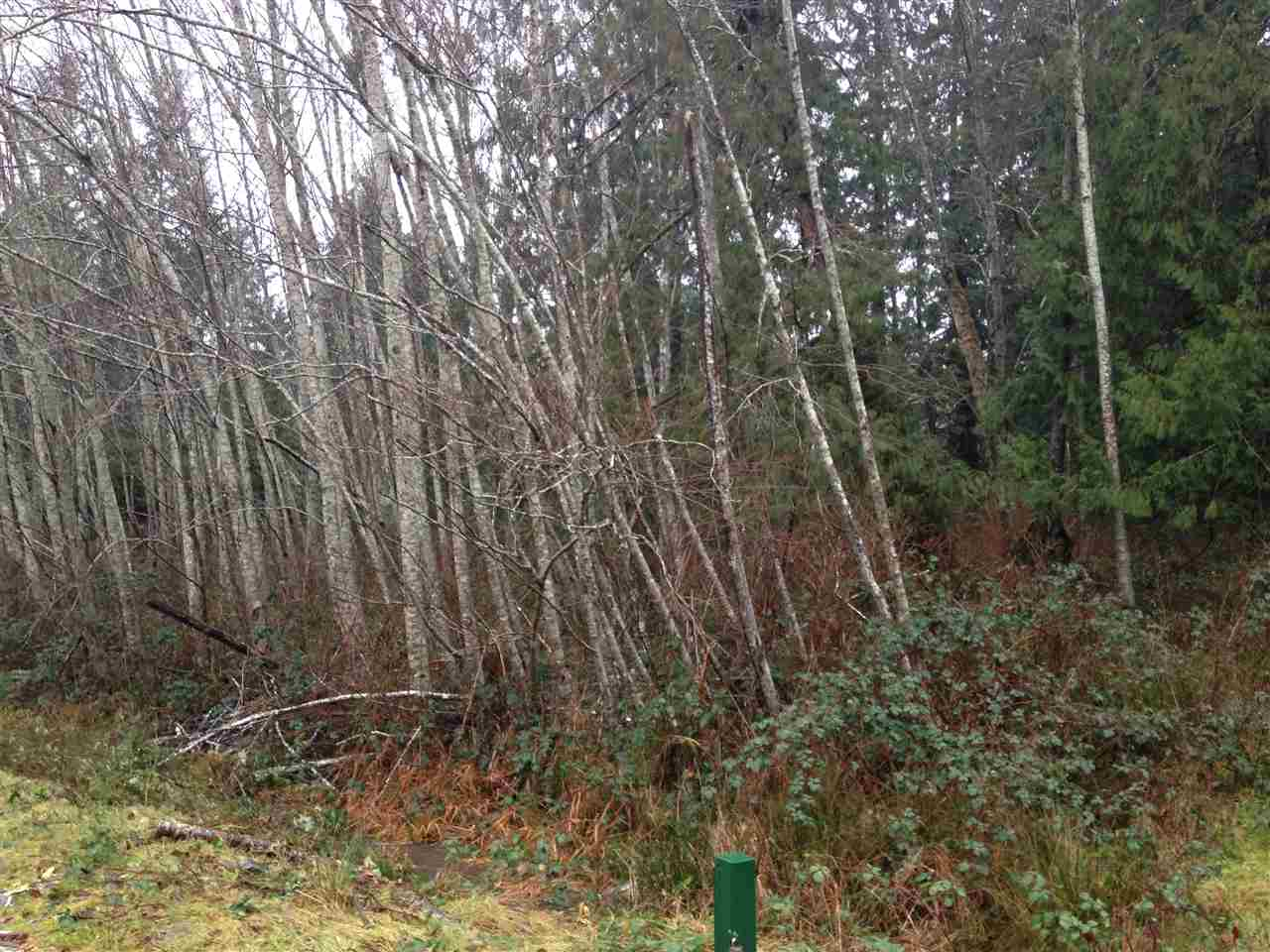 Photo 2: Photos: LOT 72 GREENTREE ROAD in Egmont: Pender Harbour Egmont Home for sale (Sunshine Coast)  : MLS® # R2027668
