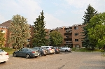 Main Photo: 208 9504 182 Street in Edmonton: Zone 20 Condo for sale : MLS® # E4080180