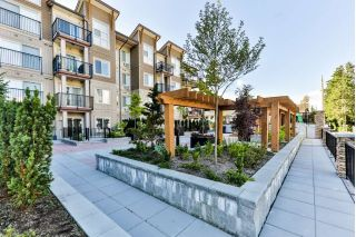"Main Photo: 105 20175 53 Avenue in Langley: Langley City Condo for sale in ""THE BENJAMIN"" : MLS®# R2286276"