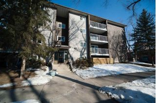 Main Photo:  in Edmonton: Zone 13 Condo for sale : MLS® # E4100355