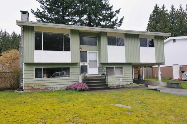 Main Photo: 11745 GRAVES Street in Maple Ridge: Southwest Maple Ridge House for sale : MLS®# V903096