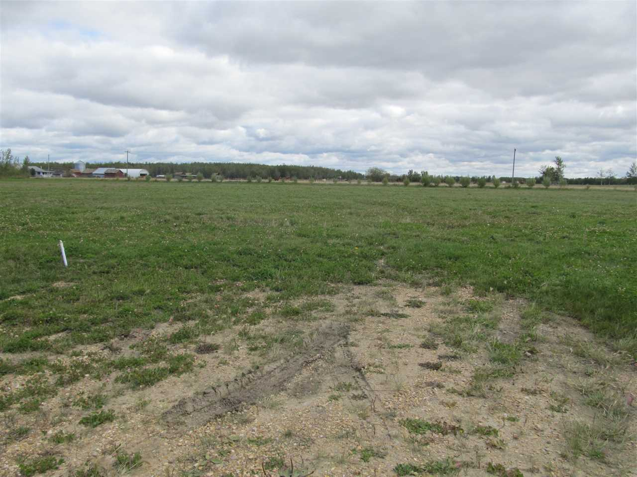 Photo 5: 59512 RR 255: Rural Westlock County Rural Land/Vacant Lot for sale : MLS® # E4037977