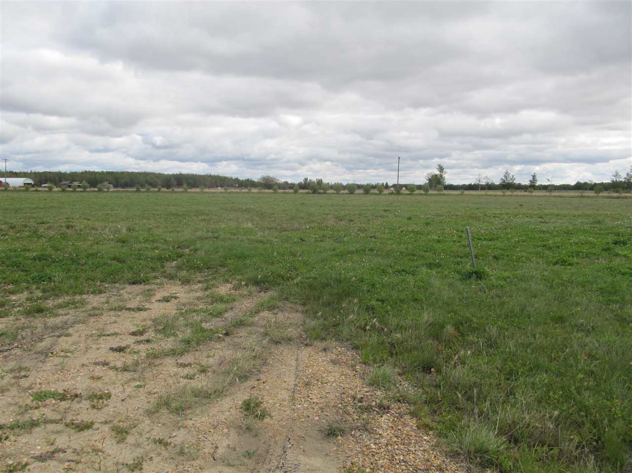 Photo 6: 59512 RR 255: Rural Westlock County Rural Land/Vacant Lot for sale : MLS® # E4037977