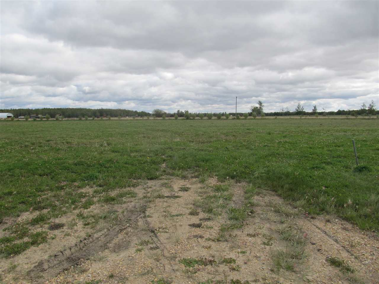 Photo 4: 59512 RR 255: Rural Westlock County Rural Land/Vacant Lot for sale : MLS® # E4037977