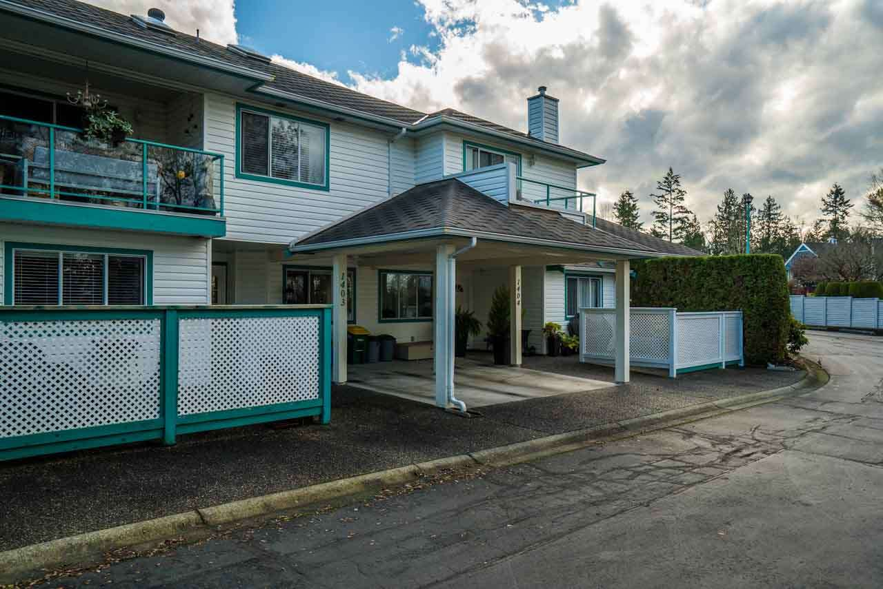 "Main Photo: 1403 21937 48 Avenue in Langley: Murrayville Townhouse for sale in ""Orangewood"" : MLS(r) # R2123839"