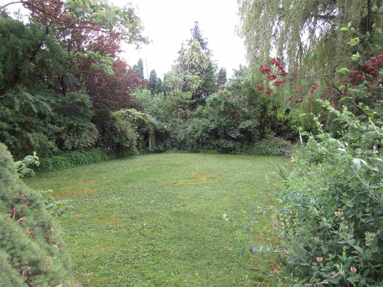 Photo 4: 45625 WORTHINGTON Place in Sardis: Sardis West Vedder Rd House for sale : MLS(r) # R2176017