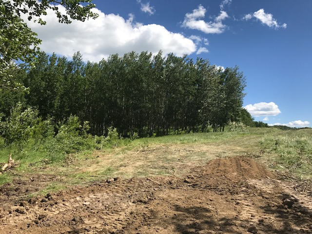 Main Photo: Lot 3 Range Road 84 in Mayerthorpe: Rural Land/Vacant Lot for sale (Lac. Ste Anne County)  : MLS(r) # 43870