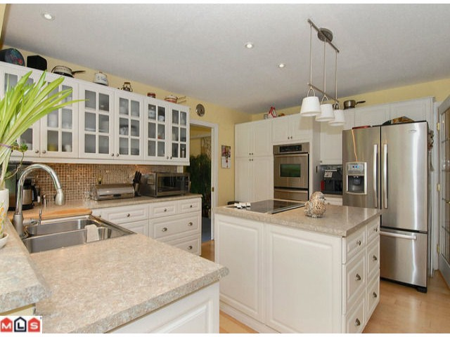 Photo 4: 17178 26A Avenue in Surrey: Grandview Surrey House for sale (South Surrey White Rock)  : MLS® # F1111437