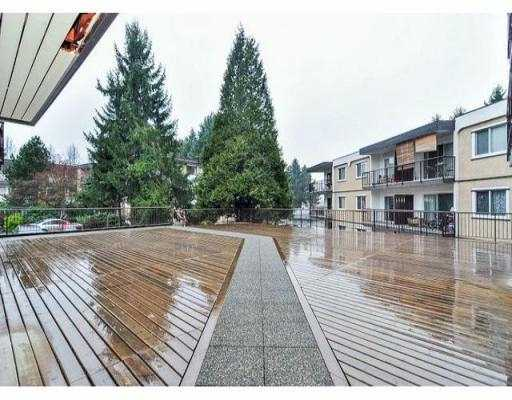 "Photo 19: 204 630 CLARKE Road in Coquitlam: Coquitlam West Condo for sale in ""KING CHARLES COURT"" : MLS® # V1054989"