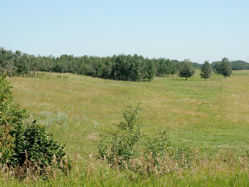 Photo 3: Twp 564 & RR 225: Rural Sturgeon County Rural Land/Vacant Lot for sale : MLS(r) # E3400322