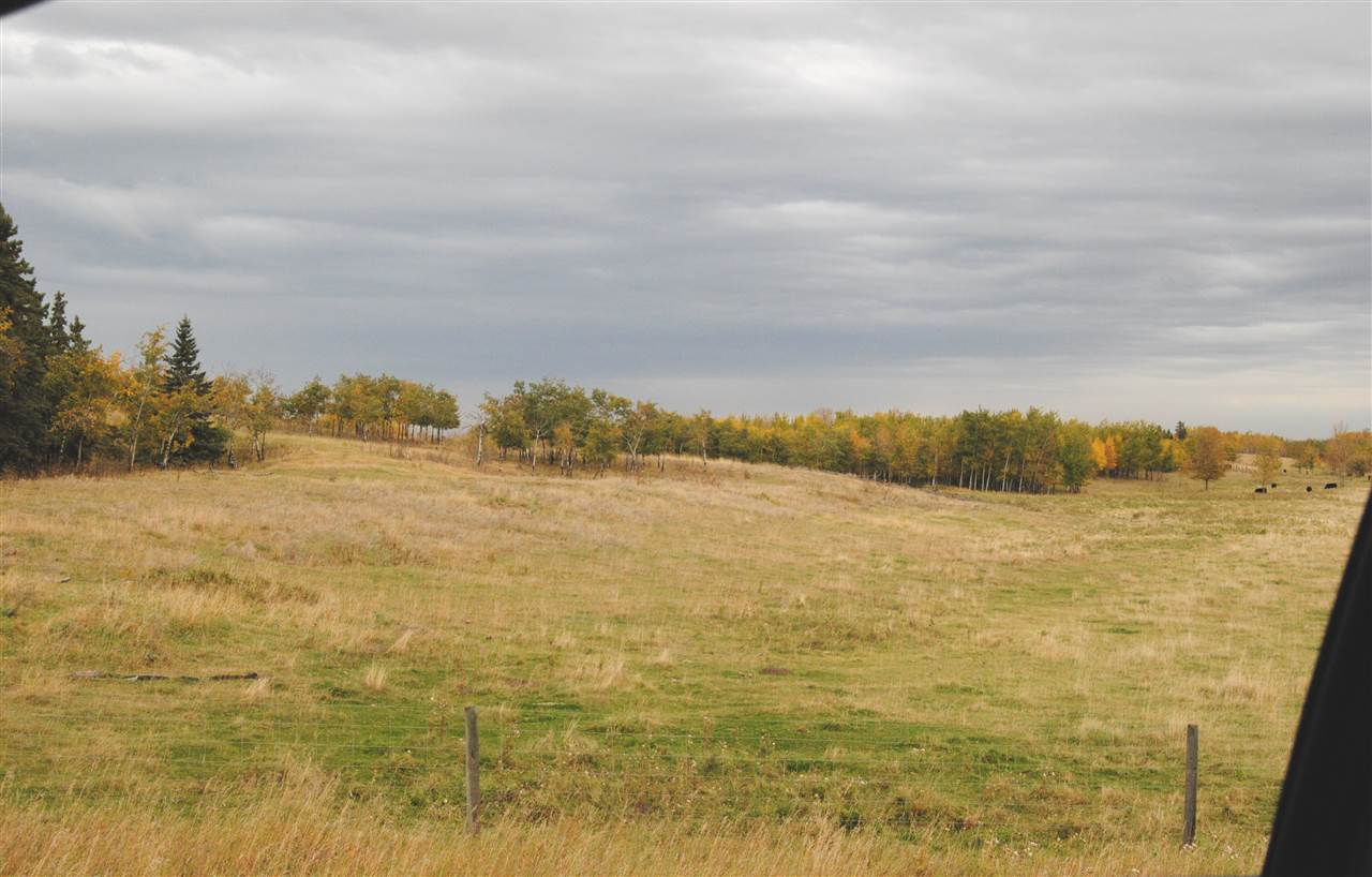 Photo 1: Twp 564 & RR 225: Rural Sturgeon County Rural Land/Vacant Lot for sale : MLS(r) # E3400322