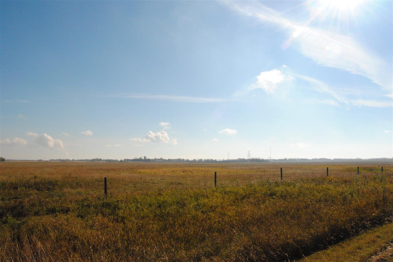 Photo 6: Twp 564 & RR 225: Rural Sturgeon County Rural Land/Vacant Lot for sale : MLS(r) # E3400322