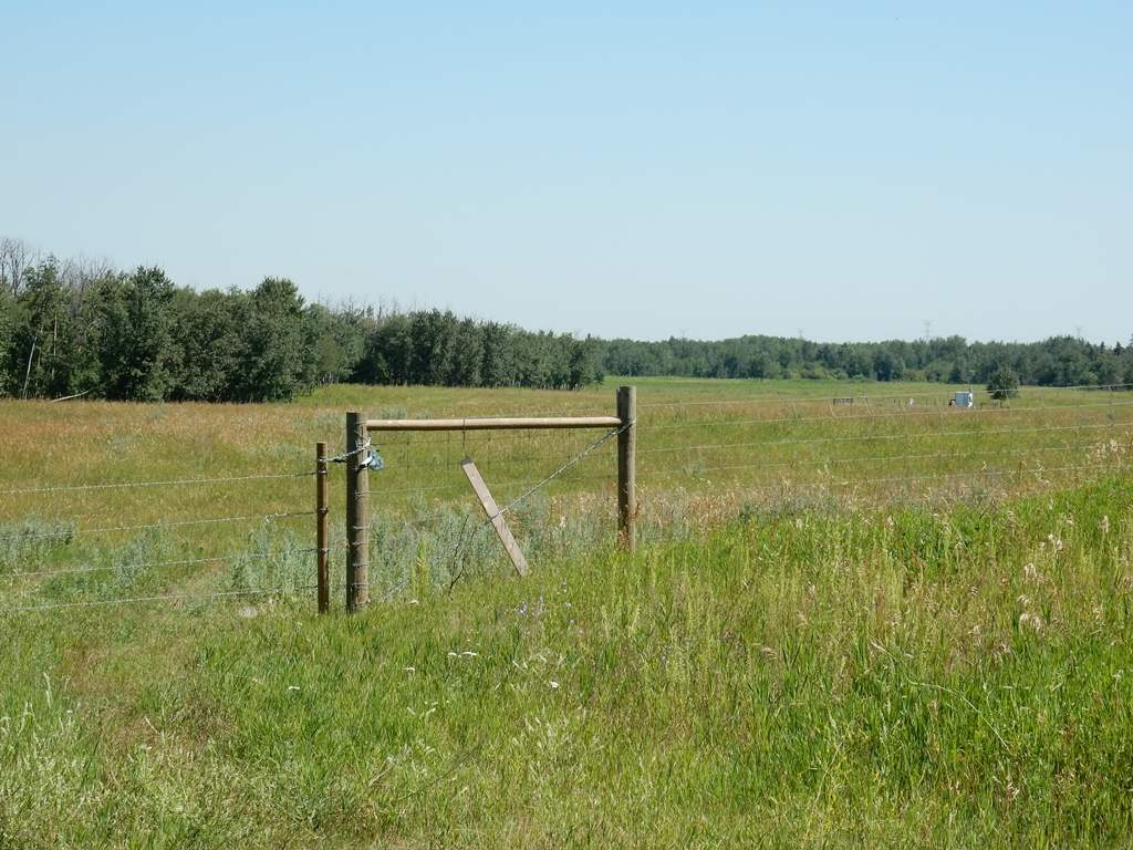 Photo 8: Twp 564 & RR 225: Rural Sturgeon County Rural Land/Vacant Lot for sale : MLS(r) # E3400322