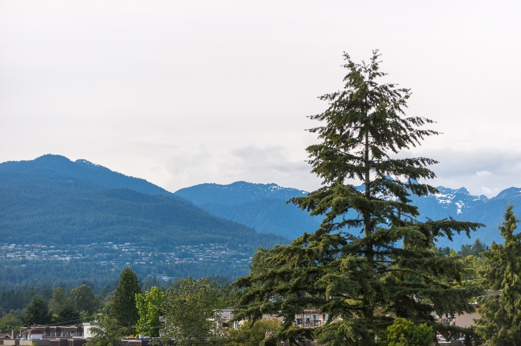 "Photo 22: 809 170 W 1ST Street in North Vancouver: Lower Lonsdale Condo for sale in ""One Park Lane"" : MLS(r) # R2081987"