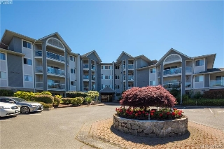 Main Photo: 101 3206 Alder Street in VICTORIA: SE Quadra Condo Apartment for sale (Saanich East)  : MLS® # 383246