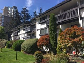 "Main Photo: 109 1561 VIDAL Street: White Rock Condo for sale in ""The Ridgecrest"" (South Surrey White Rock)  : MLS®# R2263716"