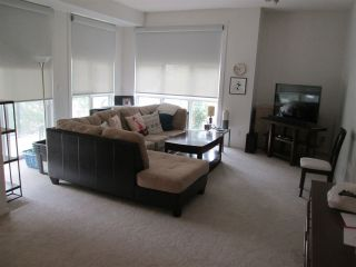 Main Photo: 301 8619 111 Street in Edmonton: Zone 15 Condo for sale : MLS®# E4120935