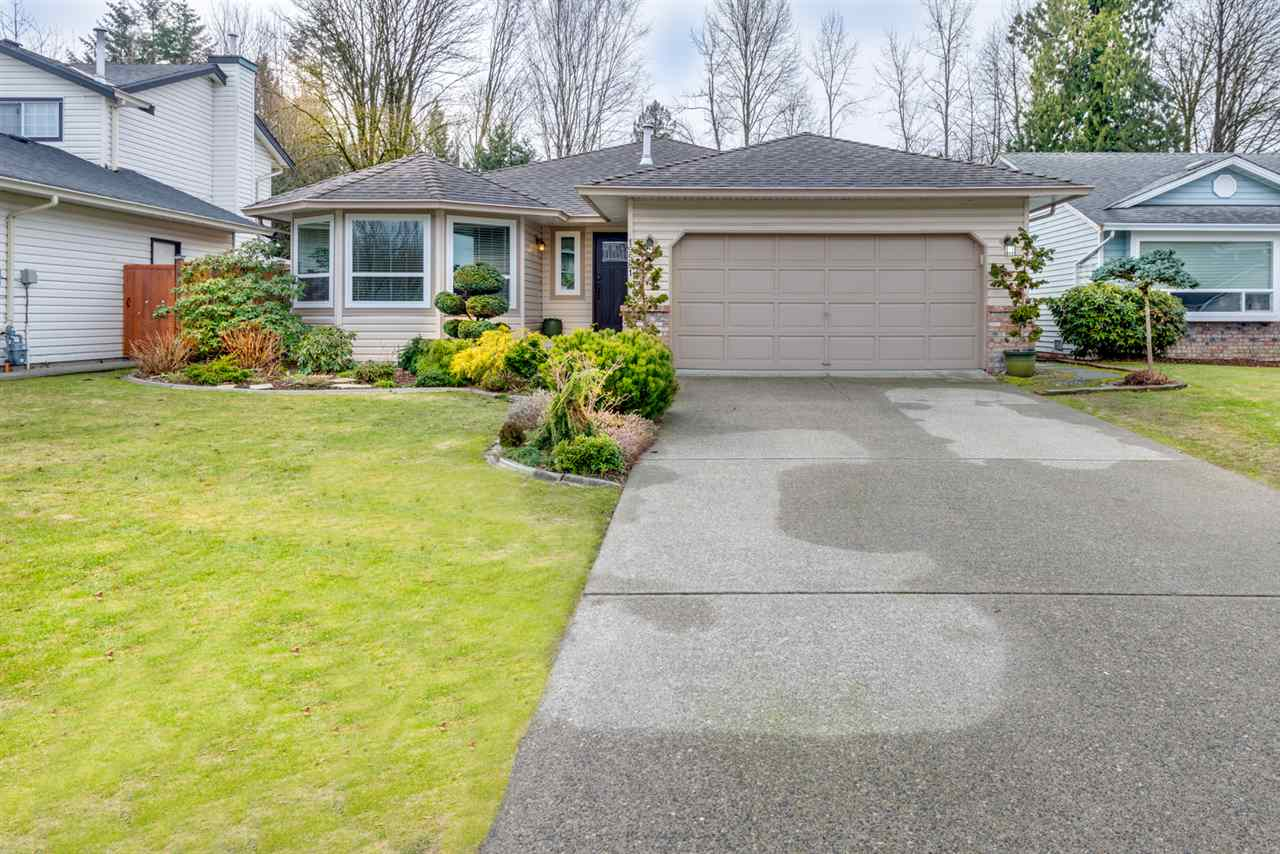 "Main Photo: 19581 SOMERSET Drive in Pitt Meadows: Mid Meadows House for sale in ""SOMERSET"" : MLS® # R2140423"