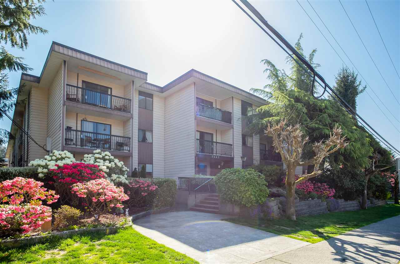 "Main Photo: 315 1442 BLACKWOOD Street: White Rock Condo for sale in ""BLACKWOOD MANOR"" (South Surrey White Rock)  : MLS®# R2262391"