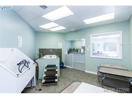 Photo 18: 7154 West Saanich Road in BRENTWOOD BAY: CS Brentwood Bay Business for sale (Central Saanich)  : MLS(r) # 377890