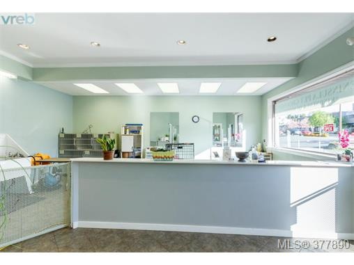 Photo 8: 7154 West Saanich Road in BRENTWOOD BAY: CS Brentwood Bay Business for sale (Central Saanich)  : MLS(r) # 377890