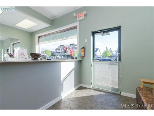 Photo 5: 7154 West Saanich Road in BRENTWOOD BAY: CS Brentwood Bay Business for sale (Central Saanich)  : MLS(r) # 377890