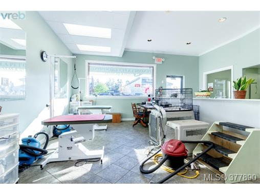 Photo 13: 7154 West Saanich Road in BRENTWOOD BAY: CS Brentwood Bay Business for sale (Central Saanich)  : MLS(r) # 377890