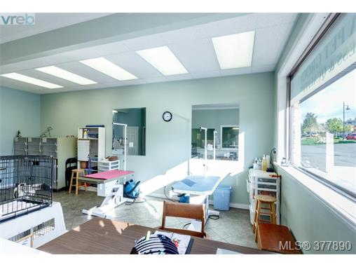 Photo 10: 7154 West Saanich Road in BRENTWOOD BAY: CS Brentwood Bay Business for sale (Central Saanich)  : MLS(r) # 377890