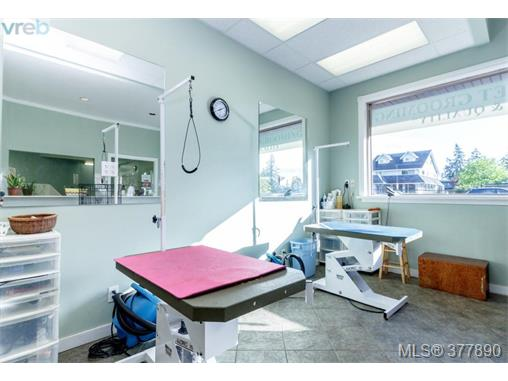 Photo 12: 7154 West Saanich Road in BRENTWOOD BAY: CS Brentwood Bay Business for sale (Central Saanich)  : MLS(r) # 377890