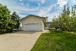 Main Photo: 17419 92 Street NW in Edmonton: Zone 28 House for sale : MLS® # E4077563