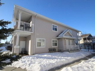 Main Photo:  in Edmonton: Zone 53 Carriage for sale : MLS® # E4100128