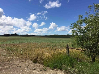 Main Photo: 54128 RR 274: Rural Parkland County Land (Commercial) for sale : MLS(r) # E4008466