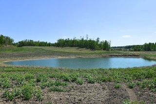 Main Photo: Hwy 43 and Twp 544: Rural Lac Ste. Anne County Rural Land/Vacant Lot for sale : MLS(r) # E4020459