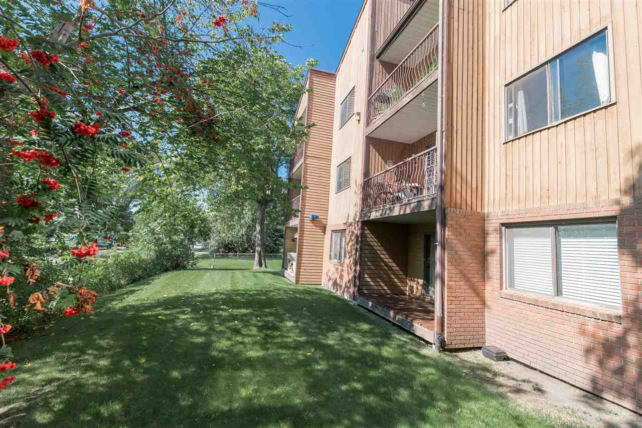 Main Photo: 103 8814 95 Avenue in Edmonton: Zone 18 Condo for sale : MLS(r) # E4069198