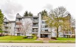 "Main Photo: 111 10530 154 Street in Surrey: Guildford Condo for sale in ""Creekside"" (North Surrey)  : MLS®# R2257833"