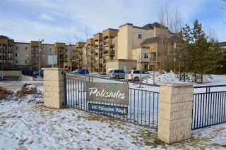 Main Photo: 207 400 PALISADES WAY: Sherwood Park Condo for sale : MLS®# E4106217