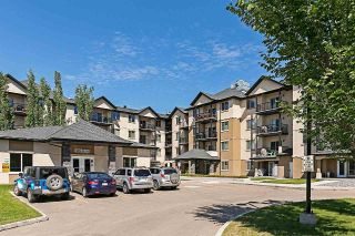 Main Photo: 104 10530 56 Avenue in Edmonton: Zone 15 Condo for sale : MLS®# E4128144